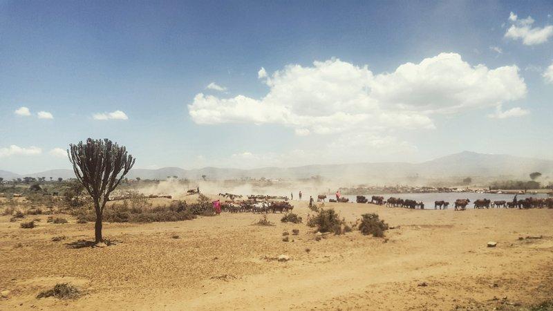 Na cestě do Masai Mara národního parku